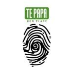 tepapalogo_900pxx900px